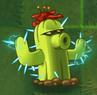 Ese Cactus Es Electrico y te puede matar si lo tocas