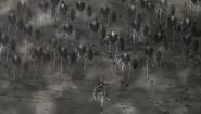 Skeletons (2)