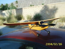 Treeplane front
