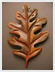 Will's bronze oakleaf