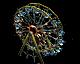 Spooky Wheel RCT3 Icon