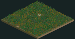 Fungus Woods RCT2