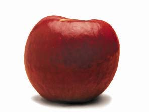 File:Bonza apple 1R.jpg