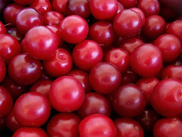 File:Cherry plus.jpg