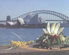 Sydneysalad