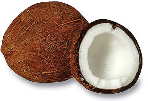 File:Coconut.jpg