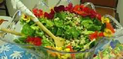 File:Summersalad.jpg