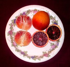 File:Bloodorange.jpg