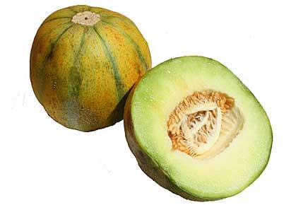 File:Ogen melon.jpg