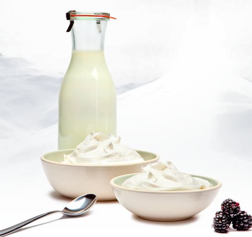 File:Cocoyogurt.png