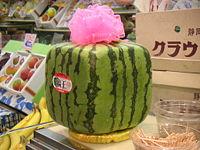 File:Squarewatermelon.jpg