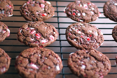File:Peppermintchocolatecookie.jpg