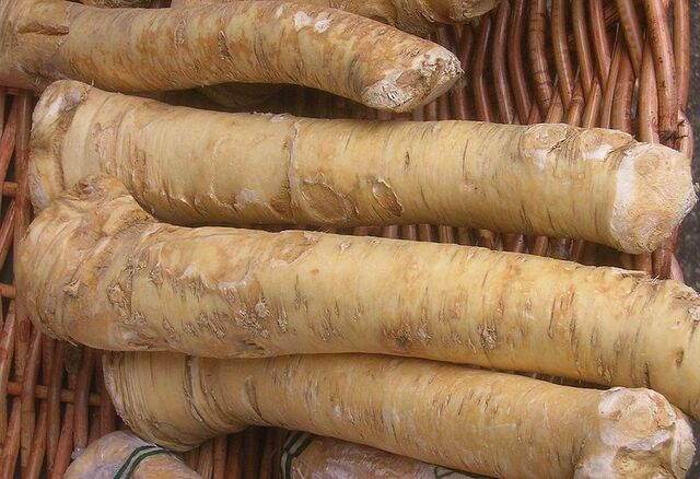 File:Horseradish.jpg