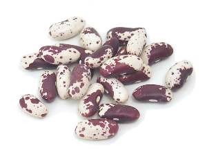 File:Trout bean.jpg