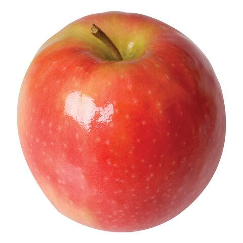File:Pink lady apple.jpg