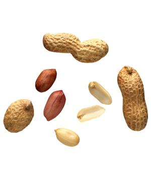 File:Peanuts 300.jpg