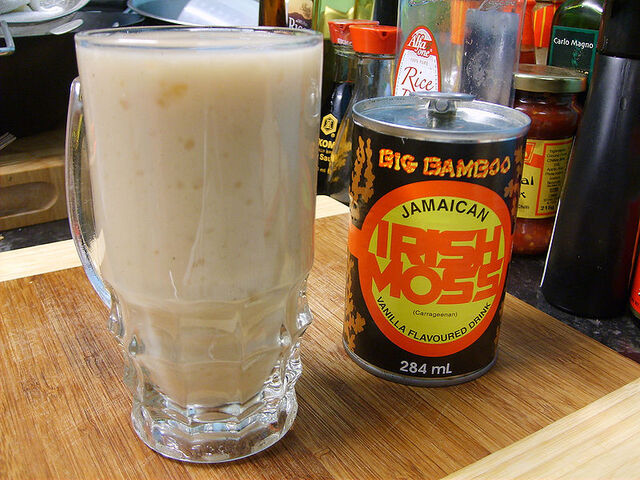 File:Jamaican Irish Moss.jpg