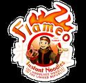 Avatar-FlameyOs