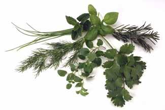 File:Herbs.jpg