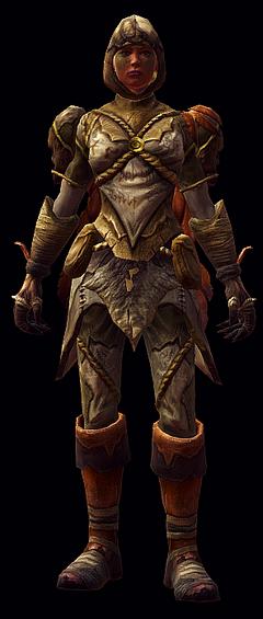 Elemental Cloak Armor Set Fem