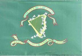 Irish brigade csa