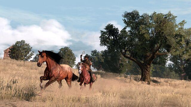 File:Rdr horse04.jpg