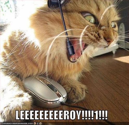 File:Lolcats-funny-pictures-leroy-jenkins.jpg