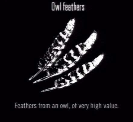 File:Animals Owl Feathers.jpg
