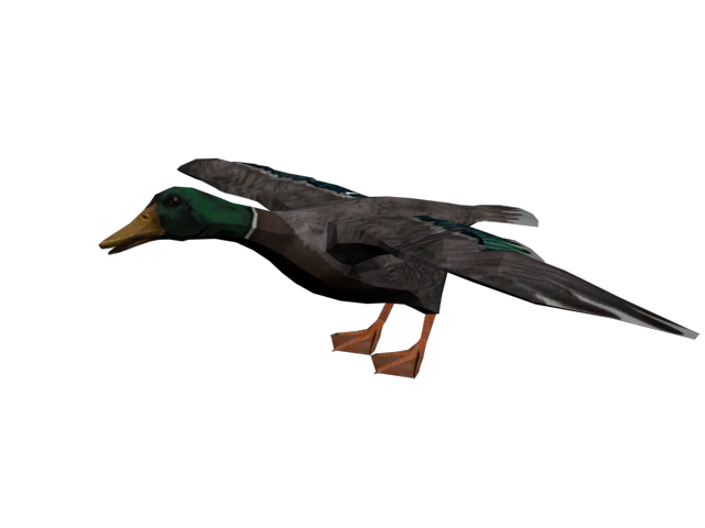 File:Pato.png
