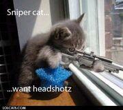 SniperKitty