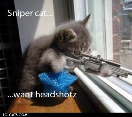 File:SniperKitty.jpg