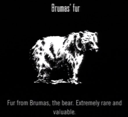 File:Animals Brumas Fur.jpg