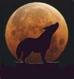 File:British coyote hunters.png