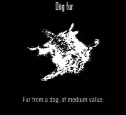 File:Animals Dog Fur.jpg