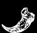 Undead Bear Claw