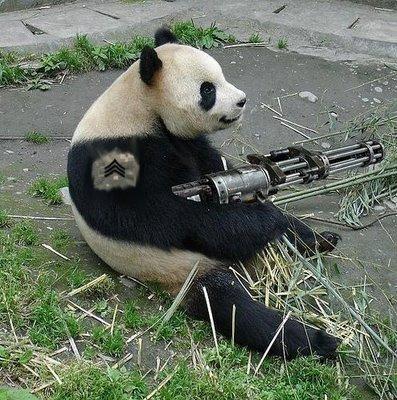 File:Pistol panda.jpg