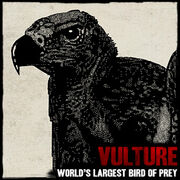 Vulture-RDR-Art