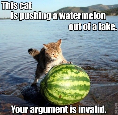 Catwatermelon invalidargument