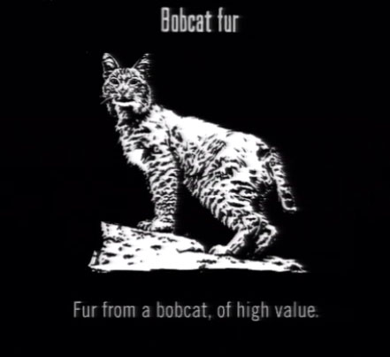 File:Animals Bobcat Fur.jpg