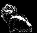 Skunk Fur