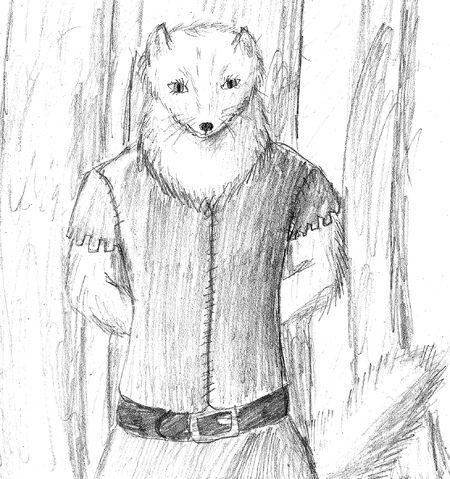 File:Jewel the Arctic Fox.jpg