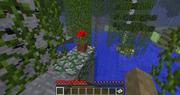 Tree on the Pond