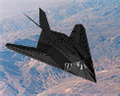 American Nighthawk Icon.png