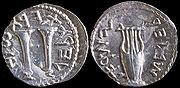 File:Bar Kokhba Coin.jpg