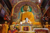 Sakyamuni Buddha