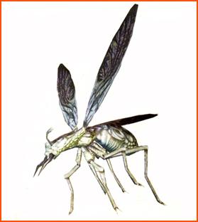 File:Ant ene.jpg