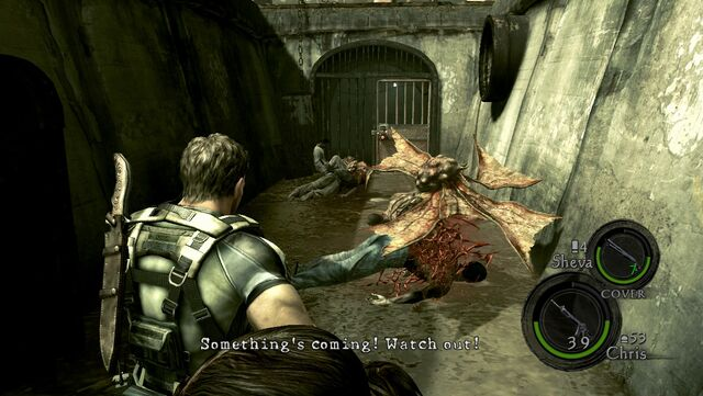 File:Resident Evil 5 - Kipepeo first encounter.jpg