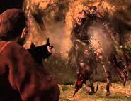 Barry versus Durga 2