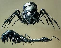 File:Head bug.jpg