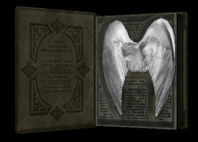 File:Book of good2.jpg